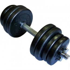 Гантель наборная стальная 21,5 кг Newt