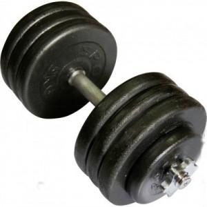 Гантель наборная стальная 42 кг Newt