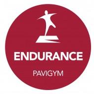 Напольное покрытие Pavigym ENDURANCE