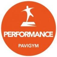 Защитное покрытие для Pavigym PERFORMANCE